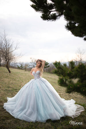 Baby blue tulle gown