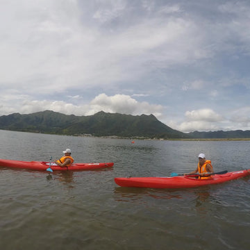 [1, 2 or 3 Star Award Certificate] 6-Hour Kayaking Course (Tai Mei Tuk)