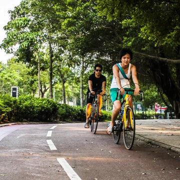 Full Day Leisure Bike Rental (Tai Po)