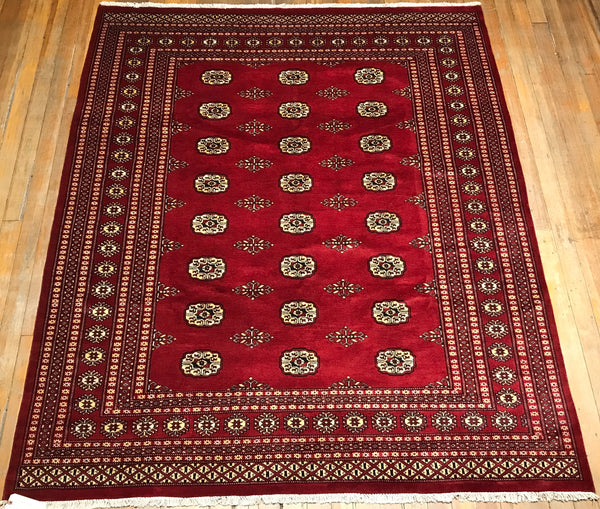 Royal Bokhara Rug. 8' x 6'.7""