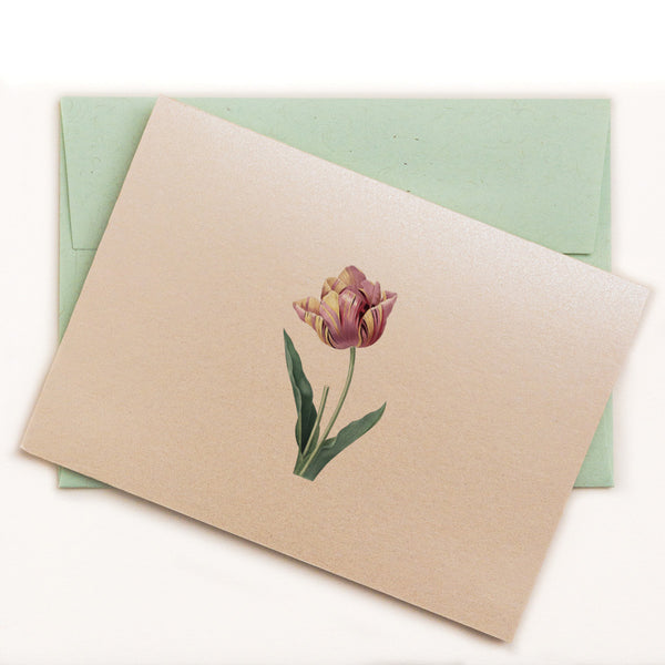 Puce and faint yellow tulip on folded notecard
