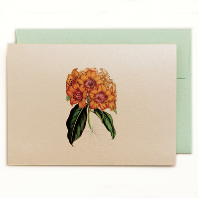 Golden Rhododendron notecard with green kraft envelope