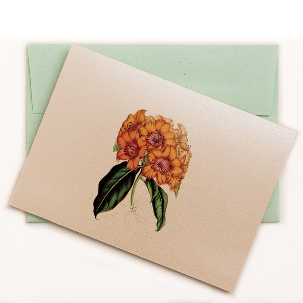 Rhododendron Notecard 1