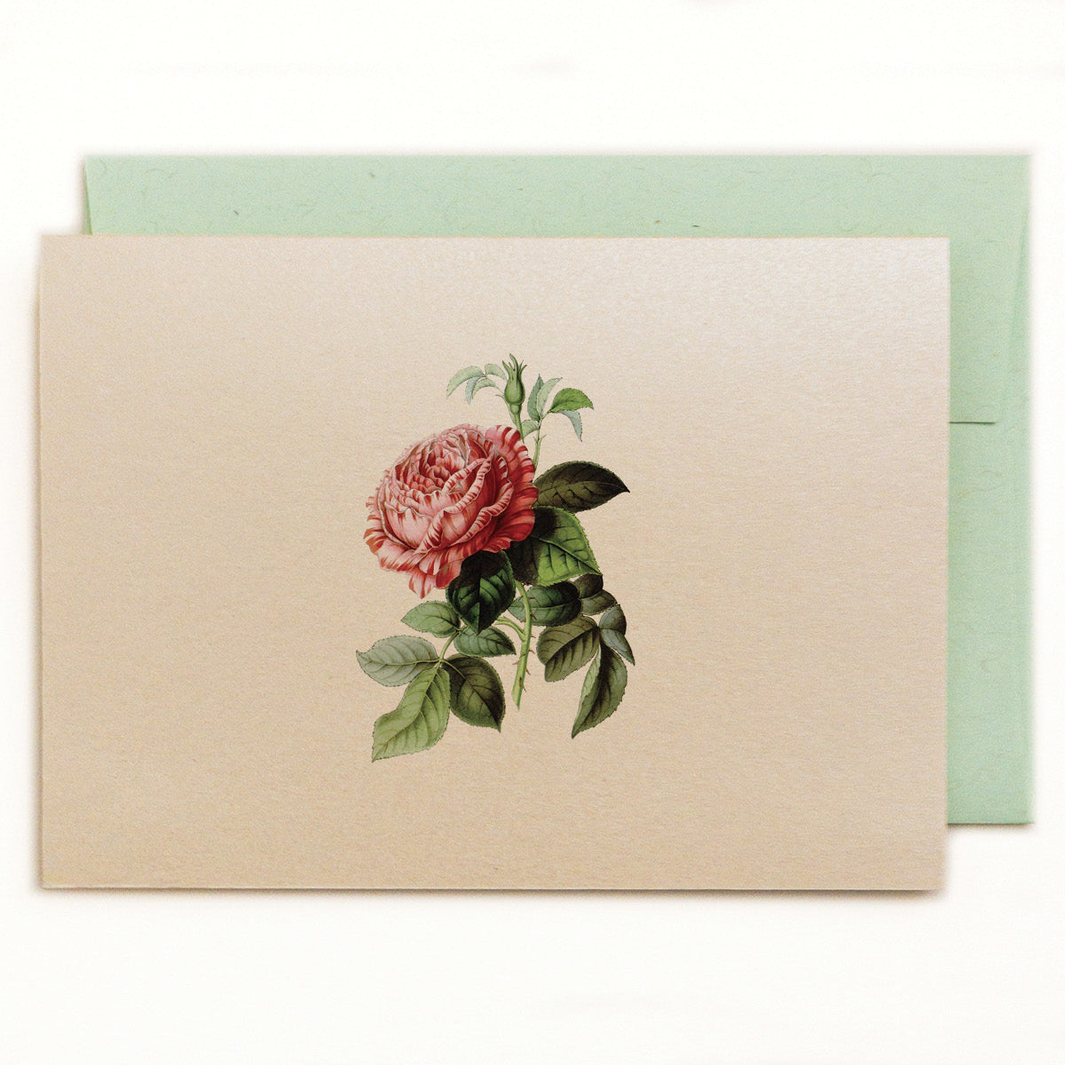 Heirloom rose on a soft white, shimmery metallic cardstock with a vintage green envelope