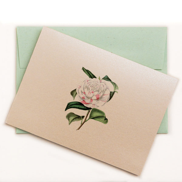 Countess Orkney Camellia Floral Notecard