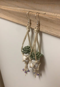 House plant hanging basket earrings