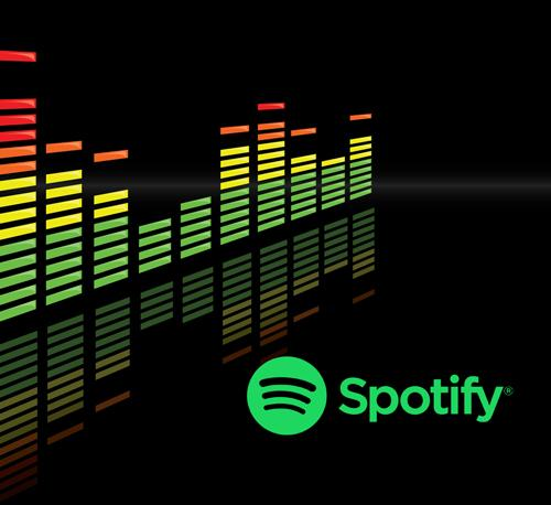 Spotify 1 Year Premium Upgrade Your Own Account 1 Year Guarantee