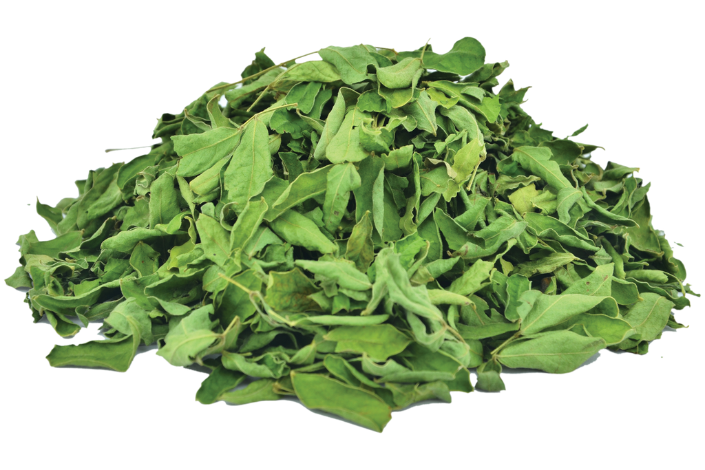 Buy Best Organic Cassia Leaves Online | Cultivator Natural Products