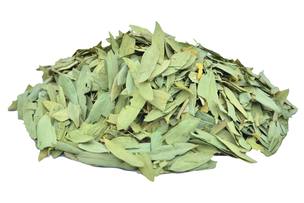 Organic Senna Leaves