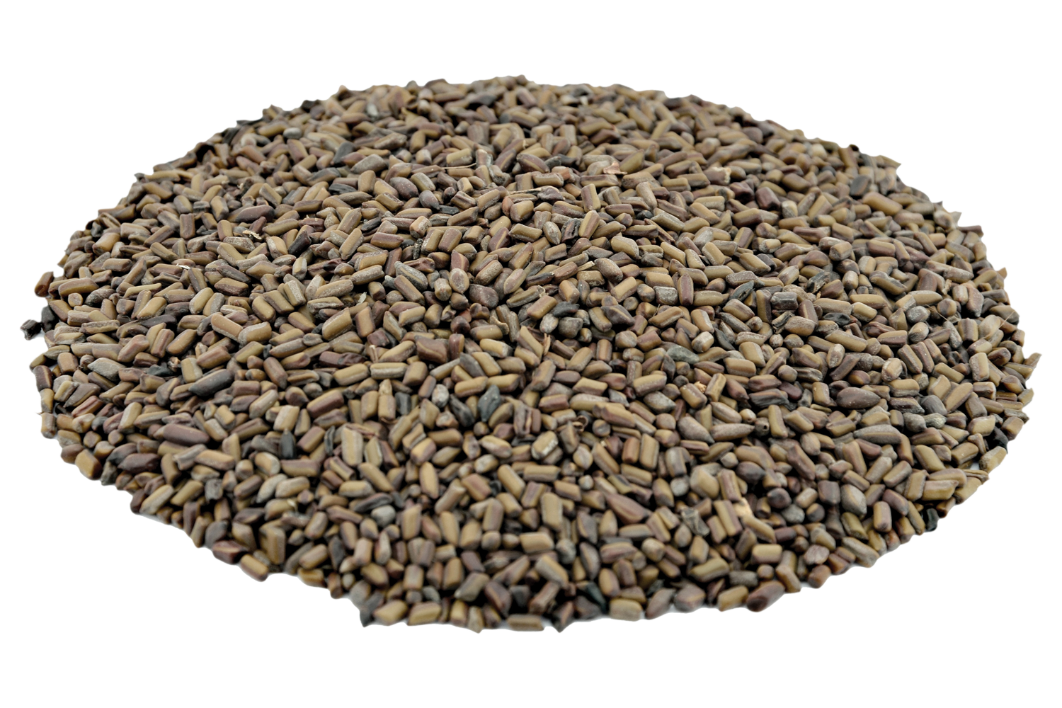 100% Organic Tora Seeds Buy Online | Cultivator Natural Products