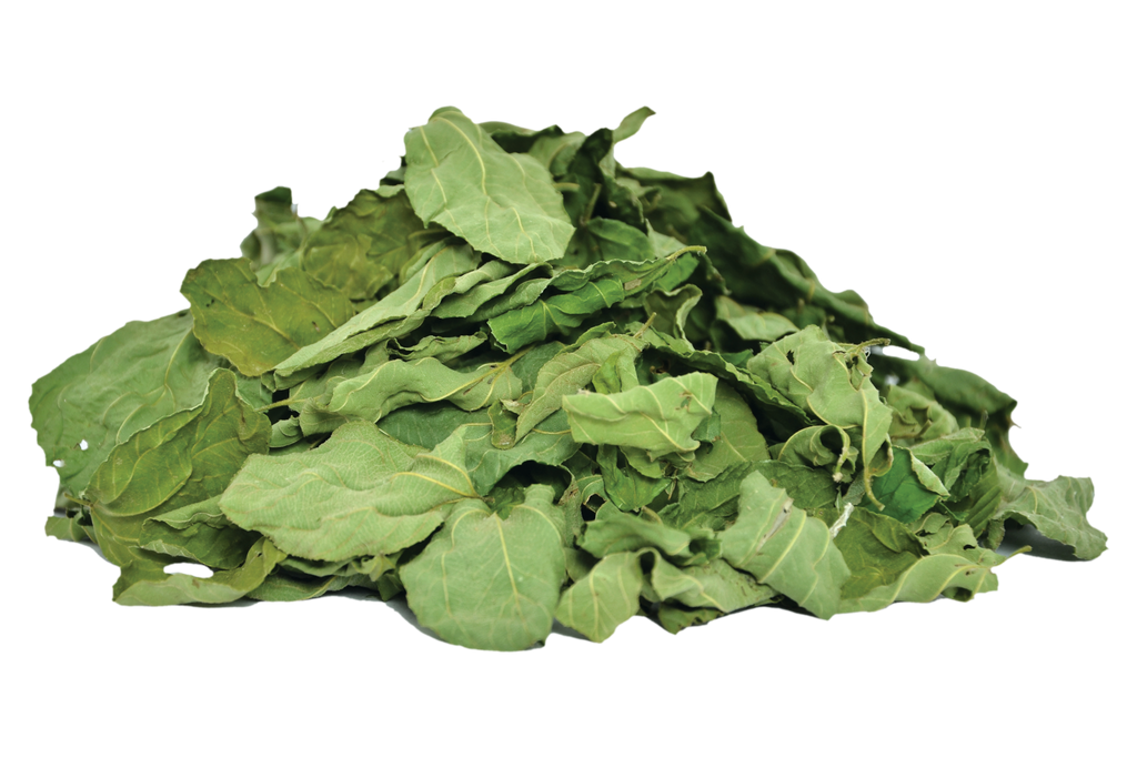 Organic Ziziphus-Spina Leaves
