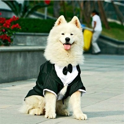 Large Dog Wedding Tuxedo