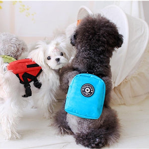 Small Dog Backpack With Harness leash