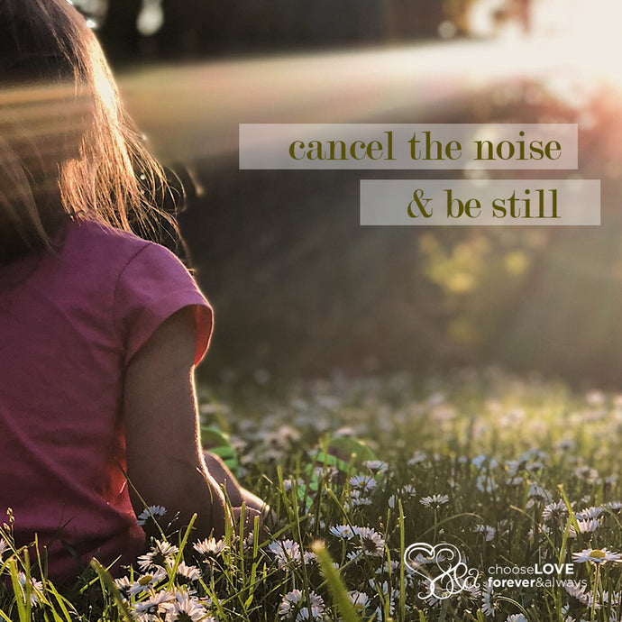 CANCEL THE NOISE