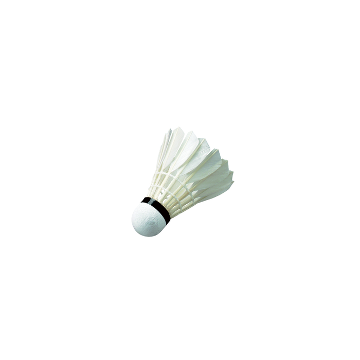 Wish Shuttlecock Feather - Training W11 - Sports Grade