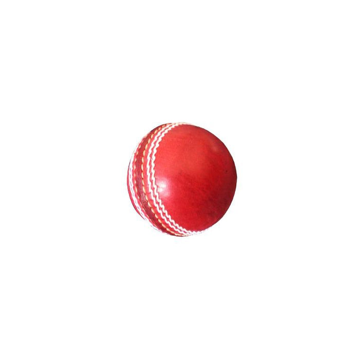 Bas Autograph Cricket Ball - Sports Grade