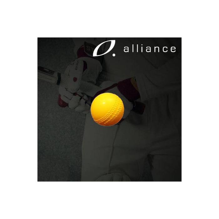 Alliance Modified Cricket Ball - Sports Grade