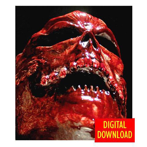 'Headless' Digital Download