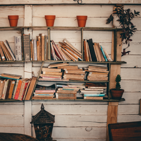 A shelf filled with old books and potted plants