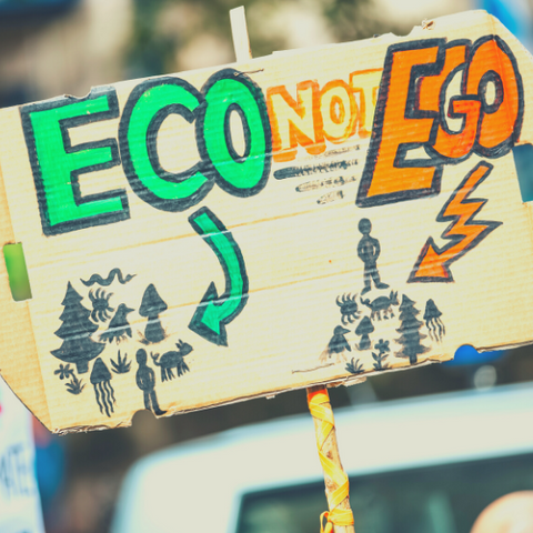Sign about protecting the planet that says eco not ego