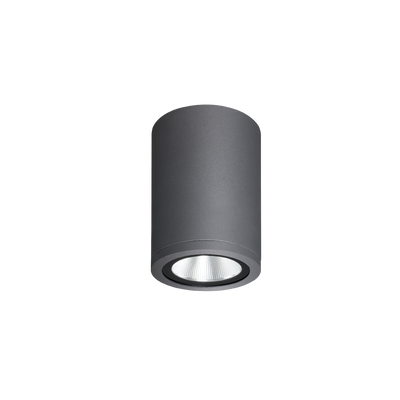 Athena Grey Exterior Surface Mounted Ceiling Light