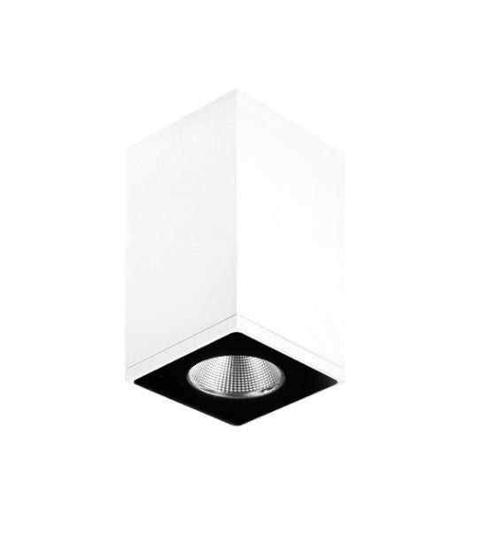 Zeron Mini White Exterior Surface Mount Down Light
