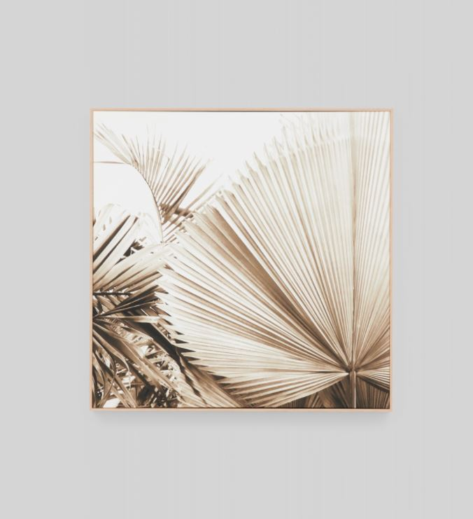 Desert Palm 1 Framed Canvas Wall Art