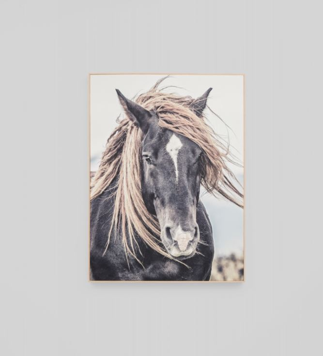 Lone Mustang Framed Canvas Wall Art