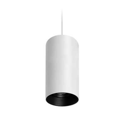 Titanium Suspended Textured White/Black Downlight