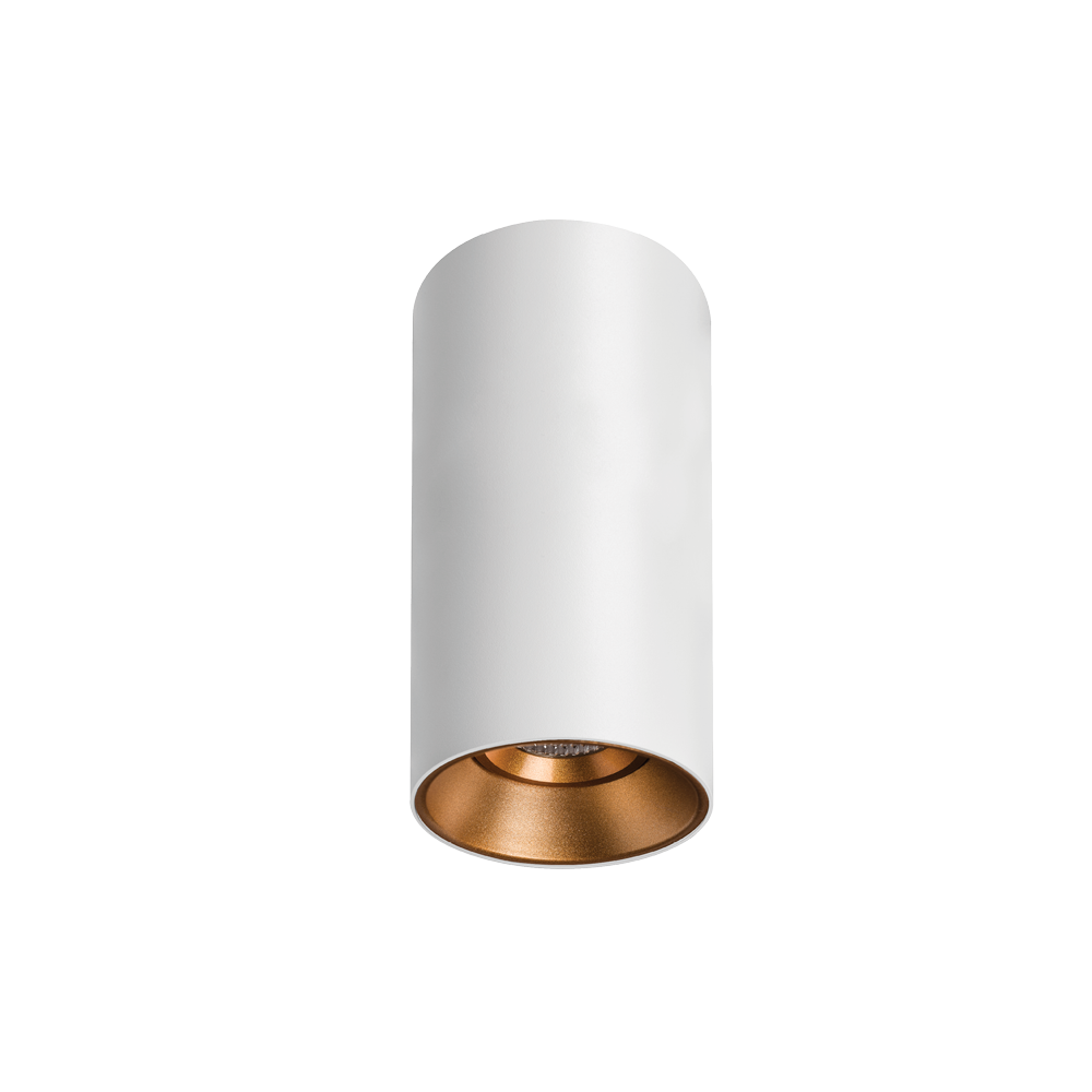 Titanium Textured White/Gold Surface Mounted Downlight