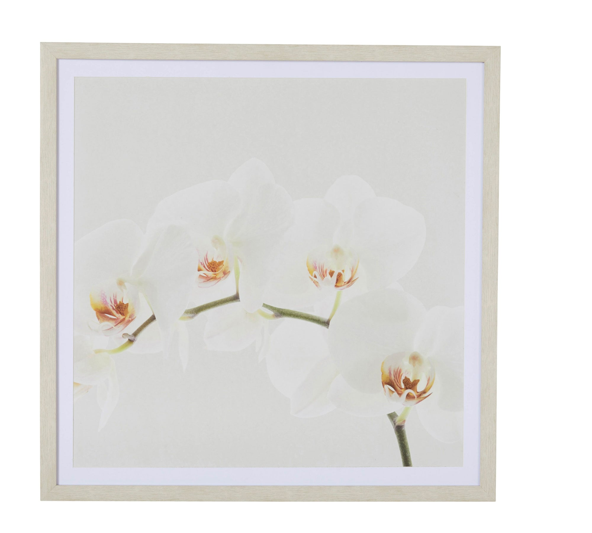 Orchid Decor Wall Art