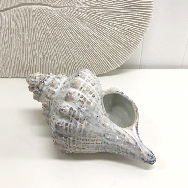 Mode Decor Shell