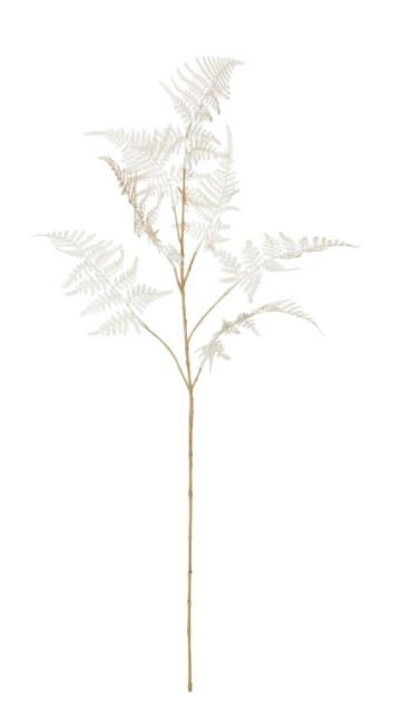 Fern White Spray
