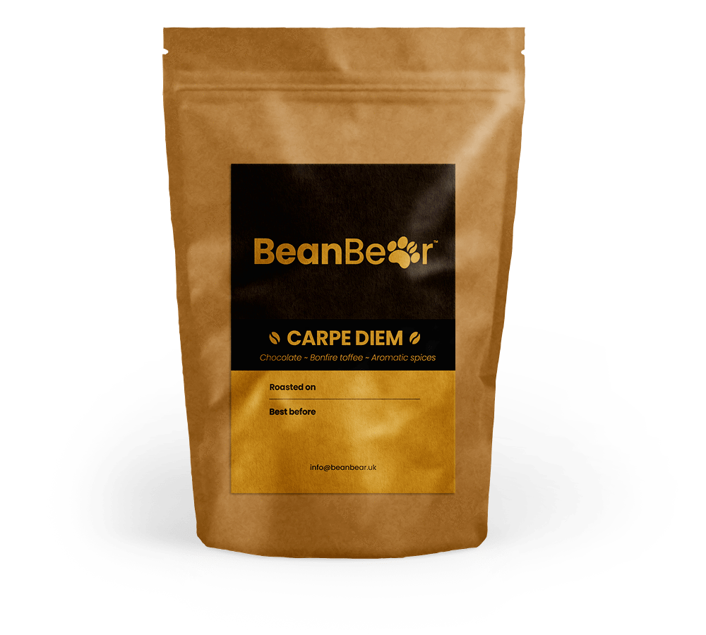 Carpe Diem Coffee BeanBear