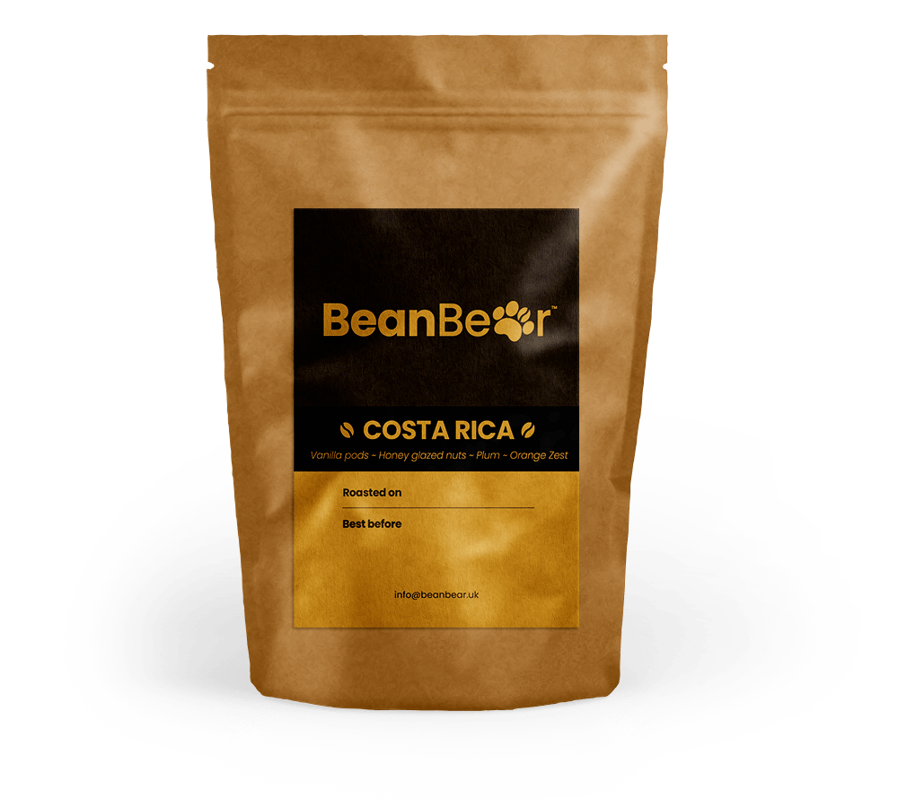 Costa Rica Coffee BeanBear
