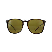 Load image into Gallery viewer, Rayban | RB4387 | 710/73 | 56