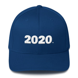 """ 2020 "" (Dem / Left ) Structured Twill Cap"