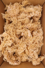 Load image into Gallery viewer, 1kg Gold St Lucia Sea Moss - Eucheuma Cottonii - St Lucia Sea Moss Organic Buy UK