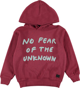 Designer Kids Fashion at Bloom Moda Online Children's Boutique - Molo Miles Hoodie,  Shirt