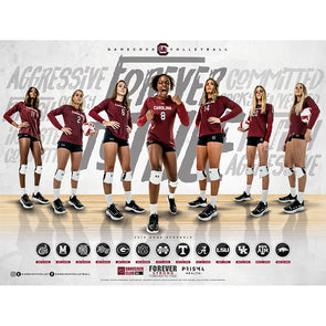 2019 South Carolina Volleyball Poster