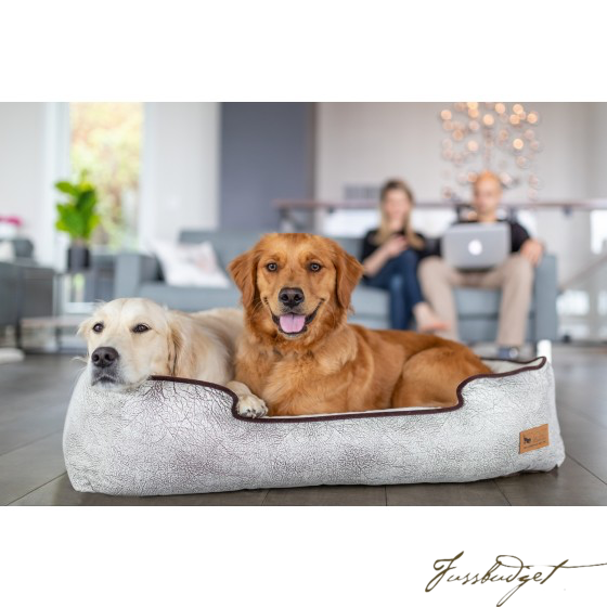 Lounge Bed - Savannah-Fussbudget.com
