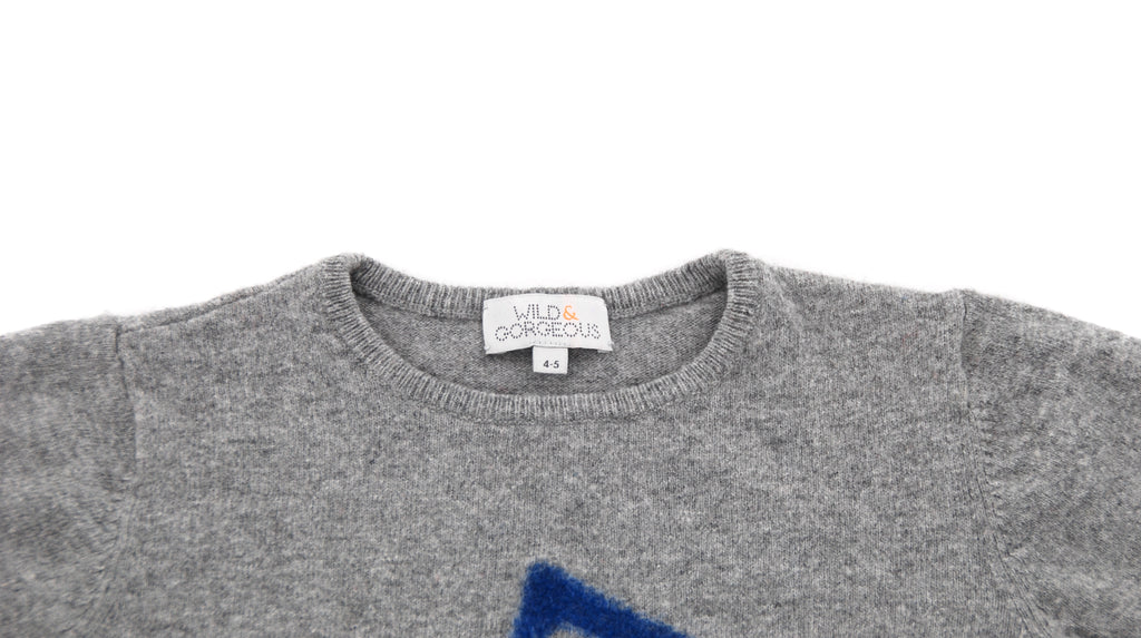 Wild & Gorgeous, Baby Boys Jumper, 9-12 Months