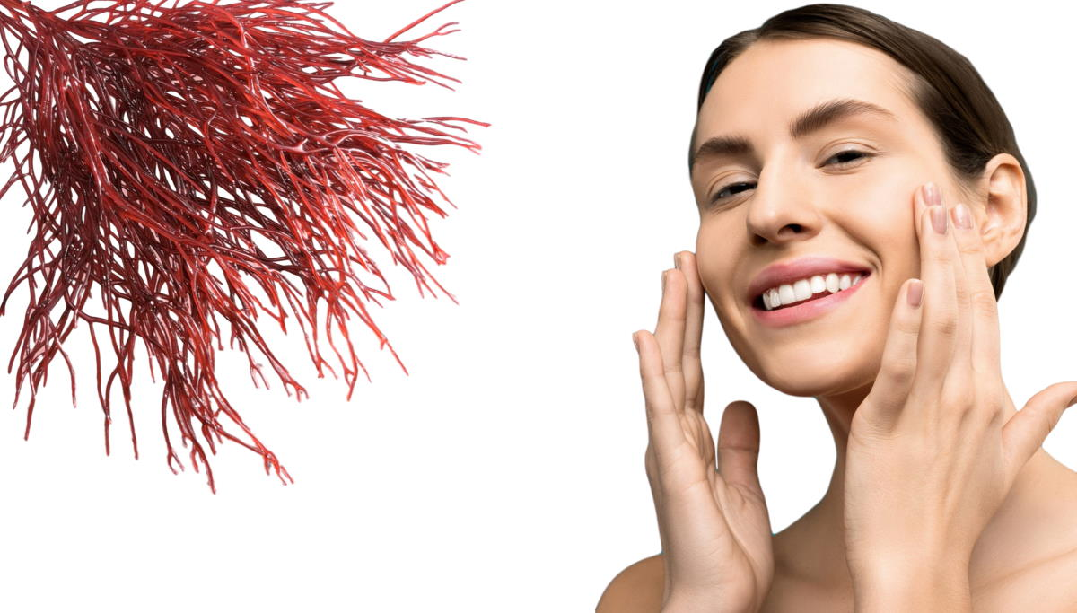 red algae benefit for skincare routine beauty routine
