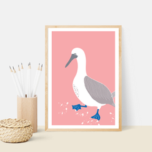 Load image into Gallery viewer, Blue Footed Booby Art Print