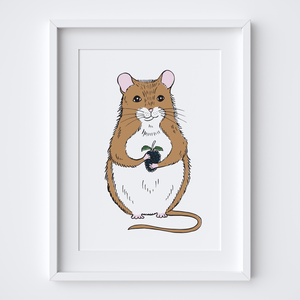 Dormouse, Limited Edition Screen Print