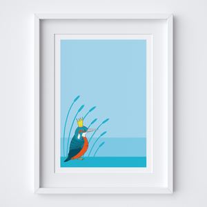 Royal Kingfisher Art Print
