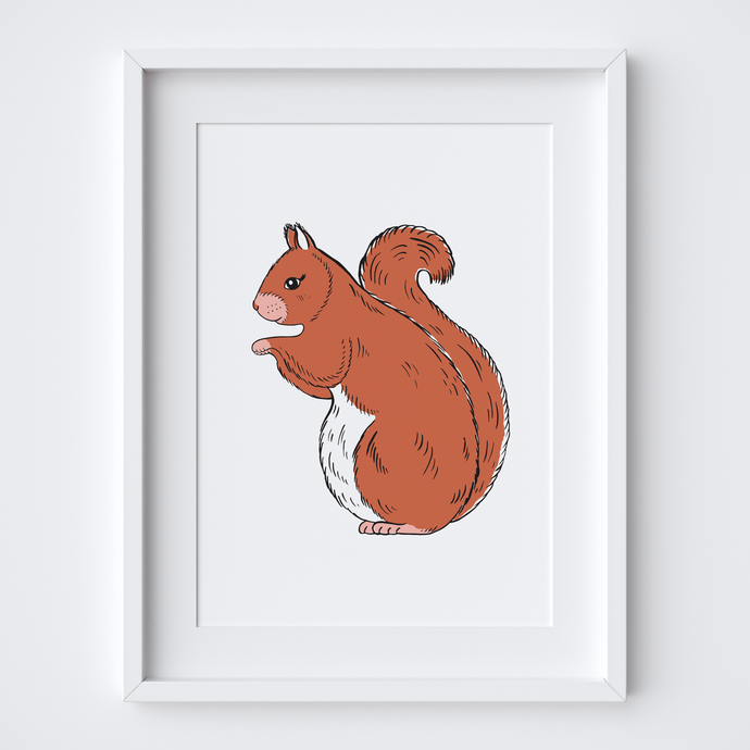 Red Squirrel, Limited Edition Screen Print