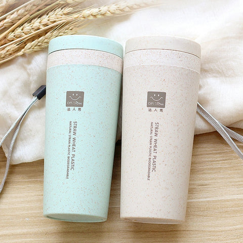 Portable Biodegradable Wheat Straw Water Bottle with Heat Insulation