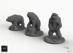 Bears - Wilds of Wintertide Wargaming Terrain D&D, DnD, Pathfinder, SW Legion, Warhammer