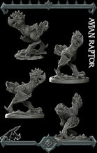 Load image into Gallery viewer, Avian Raptor - Wargaming Miniatures Monster Rocket Pig Games D&D, DnD, Pathfinder, SW Legion, Warhammer